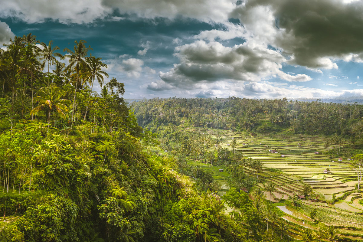 AbuDhabi-Bali-10