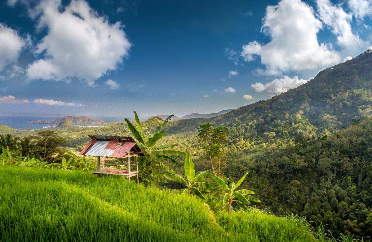 AbuDhabi-Bali-12